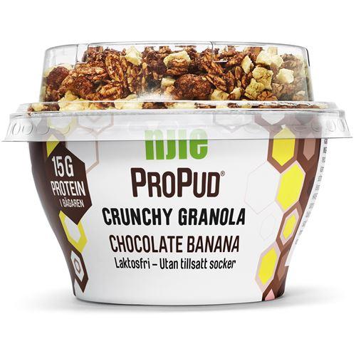 proteinpudding laktosfri
