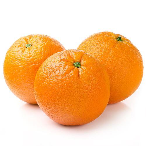 Apelsin Klass1                                         Vänta lite! Vill du ha 10% rabatt på din första order? Vad kul! Ange rabattkoden Y86BZT2R när du bekräftar ordern