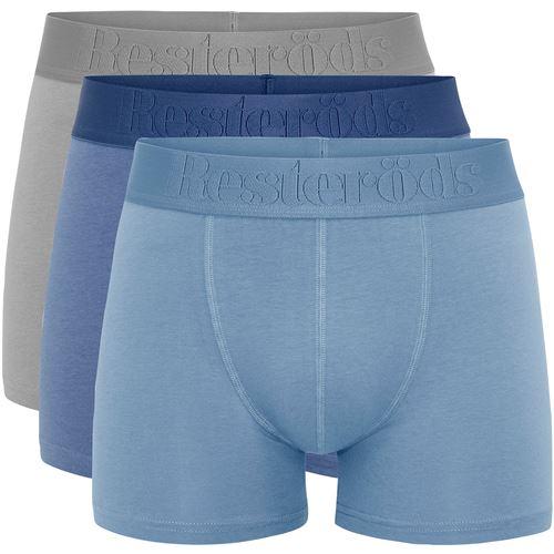 Kalsonger Boxer Bamboo Regular Leg Grå/Ljusblå/Blå S 3-P