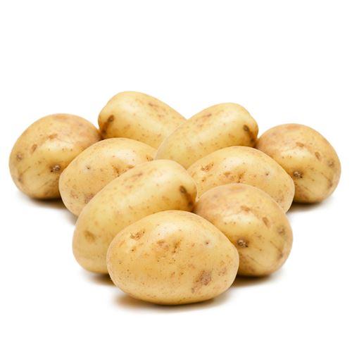 Potatis Mos/Mjölig