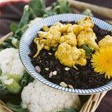 Currrykål med svart ris
